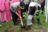 2.500 bibit pohon ditanam oleh Polres Padang Panjang