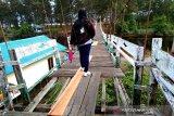 DPRD soroti kondisi jembatan gantung di Pantai Sungai Bakau