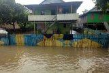 Warga Polman Sulbar ikat rumah di pohon agar tidak terseret banjir