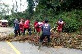 PMI Tanggamus bersihkan sampah dan puing-puing di jalan raya
