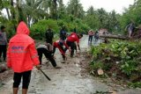 Aparat TNI-Polri bersihkan pohon tumbang di poros Trans Sulawesi