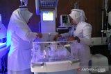 Bayi dengan berat tak sampai 1 kilogram di RSUD Pariaman,ortu bukan peserta BPJS Kesehatan