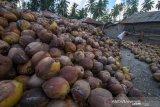Disperindag Sulawesi Utara dorong pengembangan sentra kopra putih di perbatasan