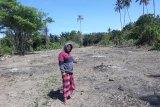Korban tsunami Mamboro-Palu bersedia dipindahkan secara mandiri