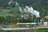 Pembangkit listrik tenaga panas bumi