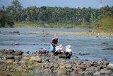 Warga mencuci pakaian di daerah aliran sungai yang mulai mendangkal , Desa Seuneubok, Kecamatan Seulimum, Kabupaten Aceh Besar, Aceh (15/2/2020). Badan Meteorologi Klimatologi dan Geofisika (BMKG) Aceh menyatakan saat ini Aceh memasuki masa peralihan musim kemarau dan puncaknya diprediksi terjadi pada Maret 2020 yang akan berdampak kekeringan di sejumlah wilayah di provinsi Aceh. Antara Aceh/Ampelsa