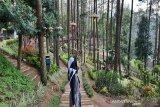 Lawu Park tawarkan wahana permainan dan penginapan