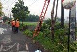 Angin kencang rusak puluhan rumah warga di Sidoarjo