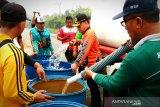 Pemkab Kotim beli mobil tangki air antisipasi karhutla dan kekeringan