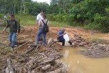Terindikasi Rusak sempadan sungai, Pemkab Bartim sanksi PT KSL