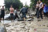 Banjir bandang di Malalo Tanah Datar rusak sejumlah rumah, hanyutkan hewan ternak (Video)