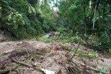 Banjir bandang dan longsor di Padang Pariaman rusak akses jalan dan bendungan