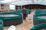 Lima pesantren di Kabupaten Solok terima bantuan pembuatan kolam bioflok