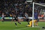 Newcastle taklukan Chelsea di menit terakhir