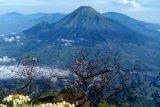 Mulai 22 Januari, pendakian Gunung Sindoro dibuka kembali