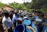 Resort di Bintan merugi Rp2,3 miliar akibat limbah minyak hitam