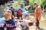 Dinkes Sulawesi Selatan ingatkan masyarakat waspada antraks