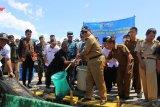 Gubernur Lampung panen perdana keramba jaring apung budidaya ikan dan udang Polinela