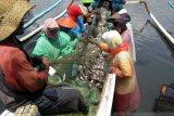 BPBD Jember ingatkan masyarakat pesisir waspadai gelombang tinggi