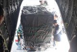Harimau sumatera dari Muara Enim Sumsel dievakuasi ke TWNC Lampung