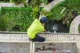 Petugas memeriksa air limbah yang diolah menggunakan Instalasi Pengolahan Air Limbah (IPAL) Wetland-Biocord Ekoparian di Telukajambe, Karawang, Jawa Barat, Rabu (22/1/2020). Menurut Kementerian Lingkungan Hidup dan Kehutanan konsep ekoparian dapat menurunkan pencemaran air serta merehabilitasi sungai dan daerah aliran sungai sebagai salah satu upaya mitigasi bencana banjir di Jawa Barat, Banten dan DKI Jakarta. ANTARA JABAR/M Ibnu Chazar/agr