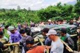 BBKSDA : Harimau sumatera ditranslokasi ke Lampung perlu diobservasi