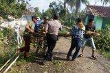 Puluhan rumah di Kabupaten Lampung Tengah rusak diterjang angin puting beliung