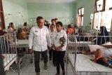 17 kecamatan di Sikka terserang DBD
