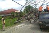 Pohon tumbang timpa mobil dan robohkan tiang listrik