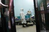 Dinkes Riau minta warga tidak panik terkait virus corona, begini penanganannya