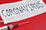 Wuhan konfirmasi ada 180 kasus terjangkit virus corona baru