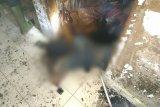 Miris, pasangan suami istri di Sumut tewas terbakar