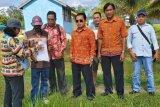 Dinas Perikanan dan KP Gumas berencana kembangkan budi daya ikan baung