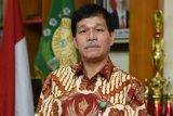 Pertimbangkan historis, Universitas Sumatera Utara rencana buka Program Studi Kelapa Sawit