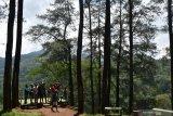 Pengunjung menikmati suasana alam pegunungan di kawasan hutan wisata Nongko Ijo, Kabupaten Madiun, Jawa Timur, Minggu (26/1/2020). Kawasan hutan wisata dengan tanaman pohon pinus di lereng Gunung Wilis tersebut ramai dikunjungi wisatawan pada saat liburan. Antara Jatim/Siswowidodo/zk