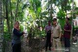 DPRD Kulon Progo meminta DPUPKP kaji pembangunan embung kawasan YIA