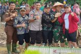 Pemkab Barito Timur bahas perampingan dan penataan perangkat daerah