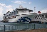 Menjajal traveling naik kapal pesiar Sapphire Princess ke Negeri Jiran Malaysia - Singapura