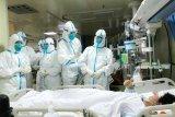 Ilmuwan Australia sukses kembangkan virus corona baru