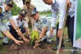 Milenial Jasa Raharja Riau hijaukan Terminal Payung Sekaki dengan 50 bibit pohon