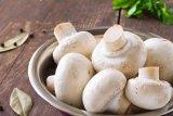 Cegah kanker dan bugarkan tubuh dengan konsumsi jamur putih