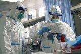 WHO mendesak peningkatan berbagi data virus corona seluruh negara