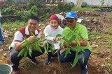Milenial Jasa Raharja Lampung motori penanaman pohon
