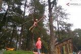 Video - Serunya bermain trampolin pohon di Hutan Pinus Limpakuwus