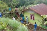 Satu rumah di Kepulauan Sitaro rusak tertimpa pohon