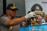 Polisi gagalkan jualan satwa dilindungi senilai Rp1,5 miliar