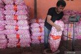 Harga bawang putih melonjak, Kalteng dorong Kemendag lakukan impor