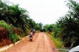 Legislator Kotim berharap daerah diberi hak bagi hasil perkebunan