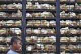 NTB siap mencetak 60.000 pengusaha peternakan milenial