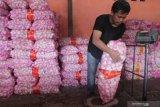 Alternatif impor bawang putih selain China